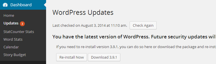 Essential Tasks Update WordPress